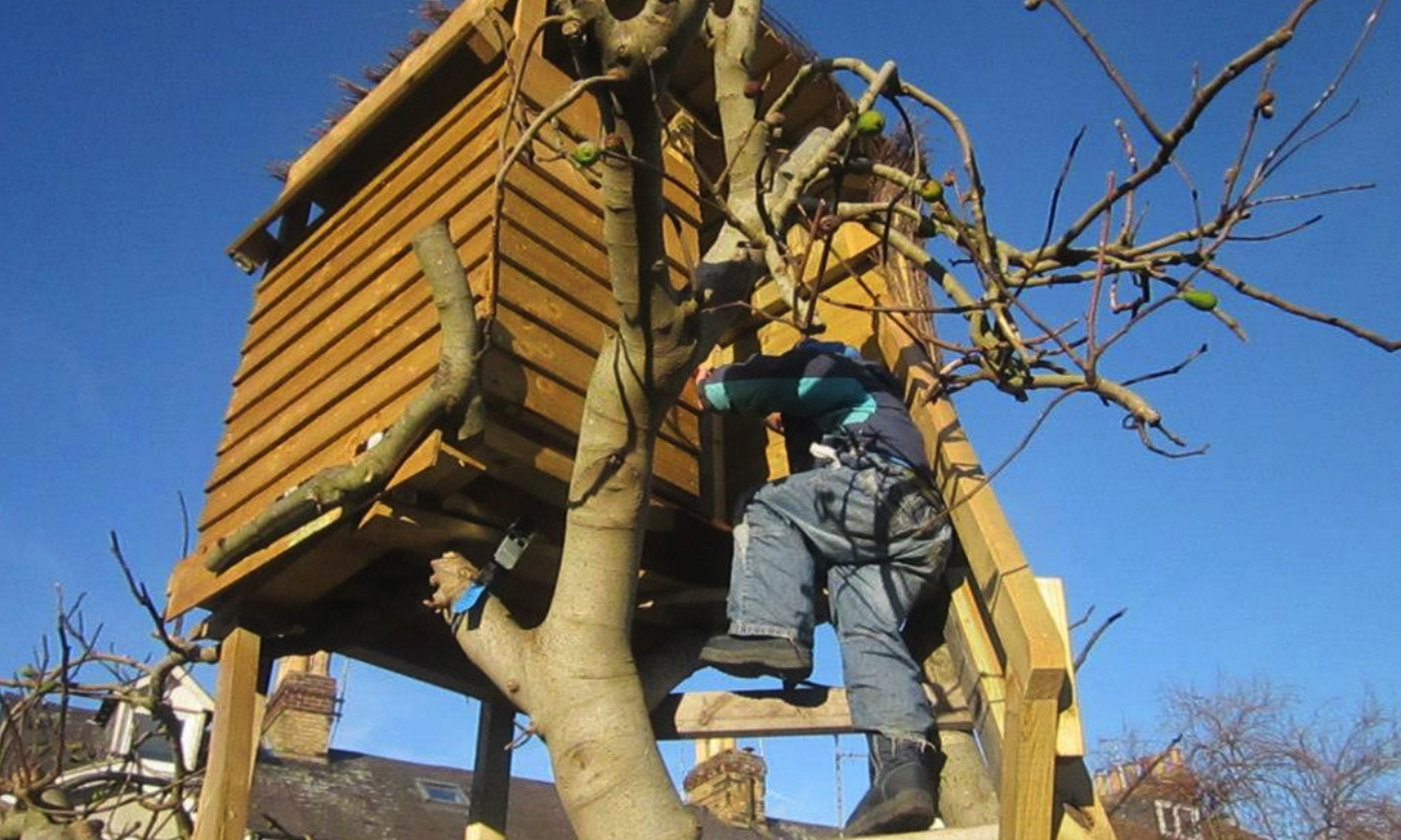 Custom Built Tree House